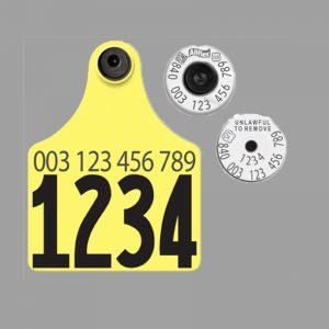 Allflex USDA 840 Matched Pair Visual Set